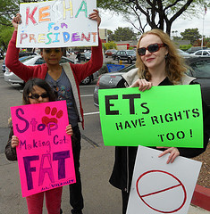 Fake Protest #2 – Down With Sequels!